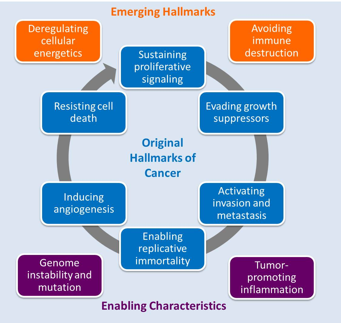 the characteristics of the hallmarks of Hallmarks of science these hallmarks are indicators of science that is being done properly collectively, they characterize the essential features of the scientific process – features that mean we can trust scientific outcomes, even though they are the products of humans with the normal individual human failings.